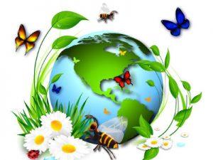 Экологическая экспертиза, Экологическая экспертиза в Ростове-на-Дону, Экологическая экспертиза ростов